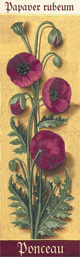 Embroidery kits PANNA Living Picture JK-2122 Botany. Poppies