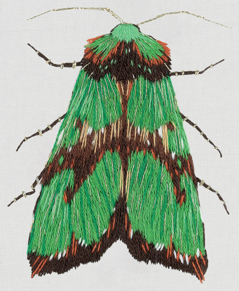 Embroidery kits PANNA Living Picture JK-2179 Green Moth
